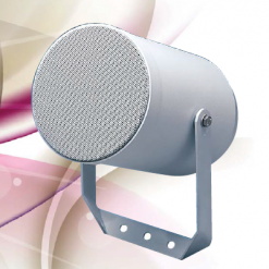 Penton PoE Projector Speaker (IP-AU-CAD20)